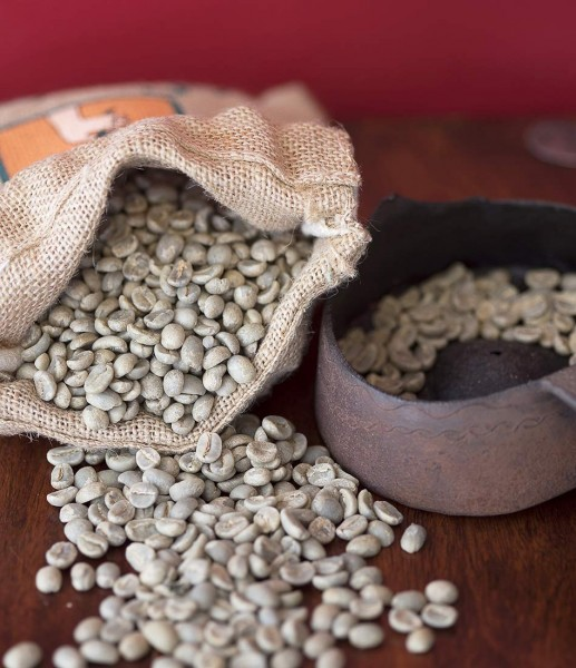 Rohkaffee - Indien Bababudangiri